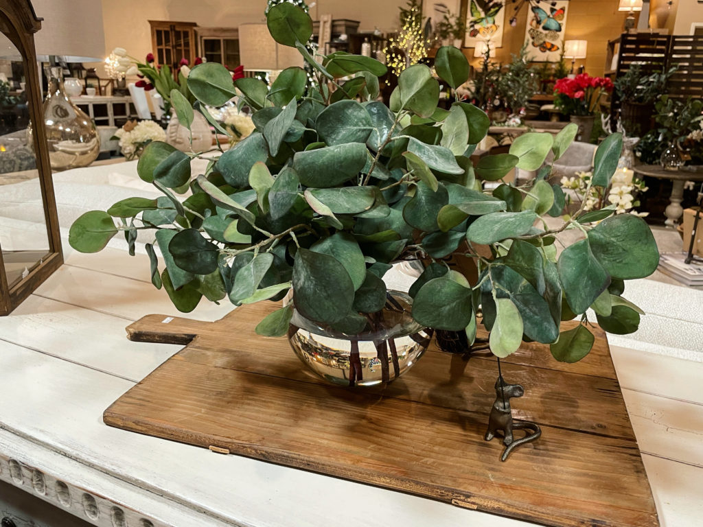 the-find-reno-realistic-faux-plants